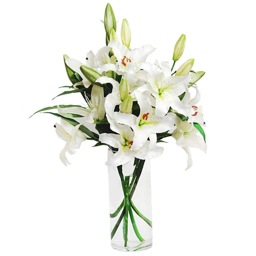 Artistic and Touch of Softness of Lilies in a Vase