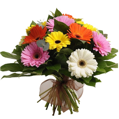 Spectacular 12 Mixed Gerbera Bouquet for Sweet Surprise