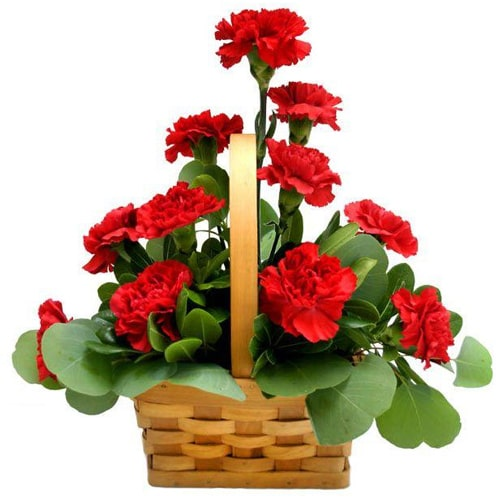Aromatic 12 Stunning and Fresh Red Carnations in a Basket