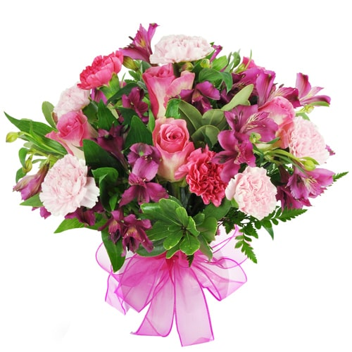 Breathtaking Pink Seasonal Flowers with Silent Whispers