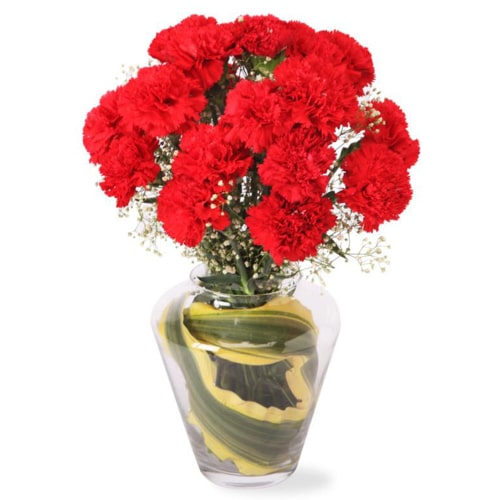 Mesmerizing 12 Carnation Delight with Vase