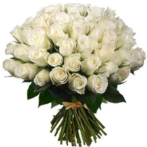 Festive Perfect Elegance Arrangement of 50 Fresh White Roses
